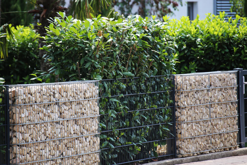 Gabionowe ogrodzenie działki